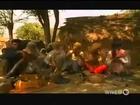 Dangerous Snakes Attack [Full Nature Wildlife Documentary]