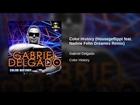 Color History (Housegeflippt feat. Nadine Fehn Dreames Remix)