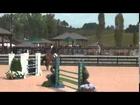 DK-USA Sporthorse:Sales  Via Dolorosa  ( Tryon Intl)