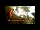 Dangerous Snakes Attack Full Nature Wildlife Documentary HD