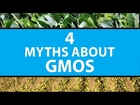 4 Myths About GMOs | Mashable