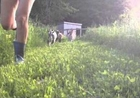 Young Goats Chase Owner Around the Farm