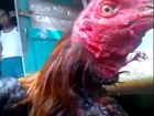 Miracle Neck severed Rooster (Allah ka Mojza)